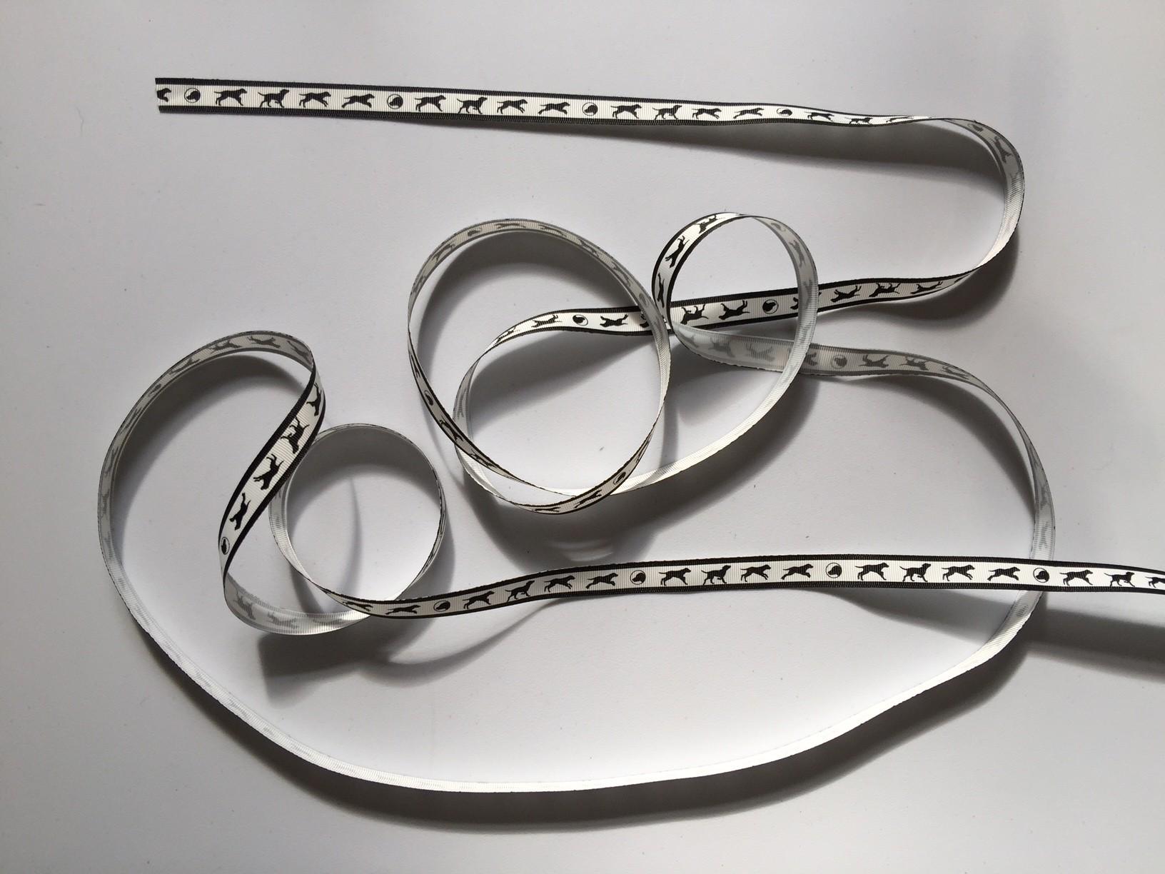 Labrador ribbon