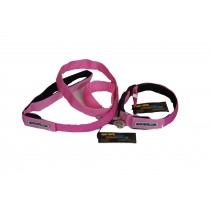 Flashing Dog Collar and Lead Set - Pink