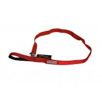 Flashing Dog Lead - Red